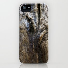 waxed oak 1 iPhone Case