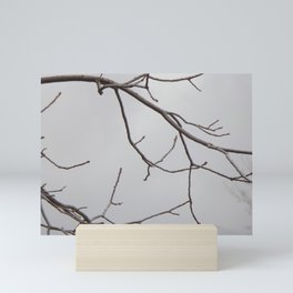 Cold Grey Sky Behind Leafless Tree Branches Mini Art Print