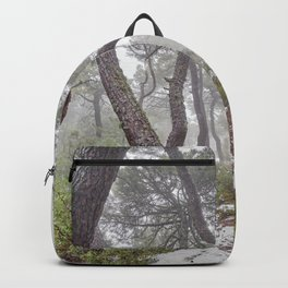Magic forest. Into the foggy woods. Yesterday Backpack