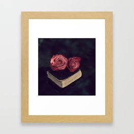 Wisdom Framed Art Print