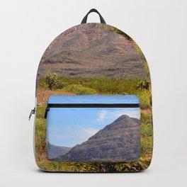 Painted Desert - III Backpack