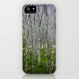 Ireland - Glendalough iPhone Case
