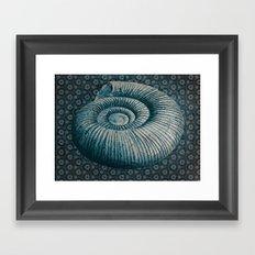 Ammonite on pattern 2201 Framed Art Print