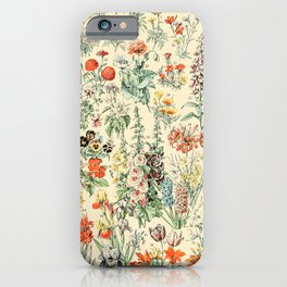 Wildflower Diagram // Fleurs II by Adolphe Millot 19th Century Science Textbook Artwork iPhone Case