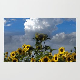 sunflowers and clouds -1- Rug