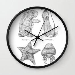 The Origin of Species Wall Clock