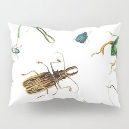 Bug Life - Beetles - Bugs - Insects - Colorful - Insect Pattern Pillow Sham