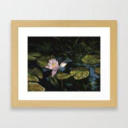 Lilly  pond Framed Art Print