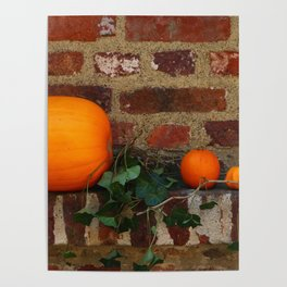 Gourds On A Windowsill Poster