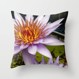 Nymphaea 'Rhonda Kay' III Throw Pillow