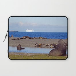 Fur seals with iceberg in the distance Laptop Sleeve