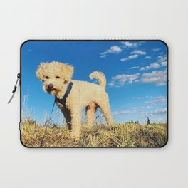 Maltipoo, meet clear blue Peruvian sky Laptop Sleeve