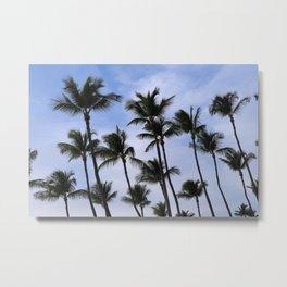 Palm Trees in Aruba Metal Print