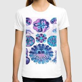 Ernst Haeckel Discomedusae 98th Plate T-shirt