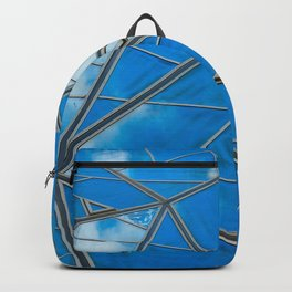 Blue sky reflections Backpack