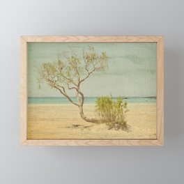 Seclusion Framed Mini Art Print
