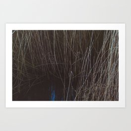 WATER THOUGH REEDS Art Print