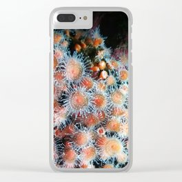 Coral Polyps Clear iPhone Case
