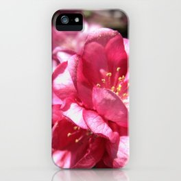 Malus Flower iPhone Case