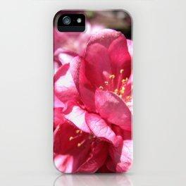 Malus Flower iPhone Case