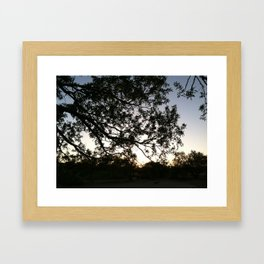 Arizona Golf Course Sunset I  Framed Art Print