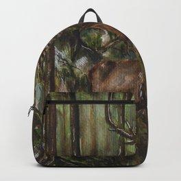 Hiden Backpack