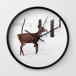 Chevreuil Wall Clock