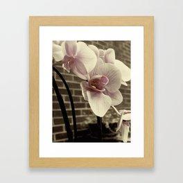 RUST;ORCHID Framed Art Print