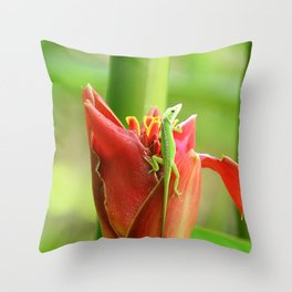 Exploring - The Gecko's Point of View Throw Pillow