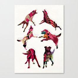 perros Canvas Print
