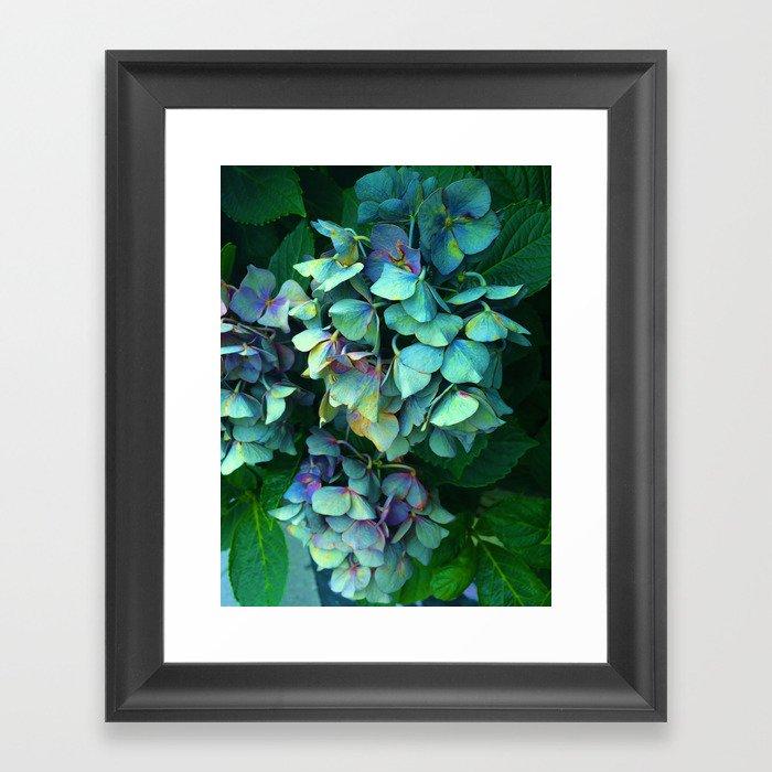 Treasure of Nature VII Framed Art Print