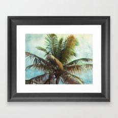 Palm, Tropical Framed Art Print