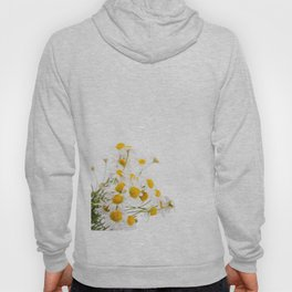 Many white flowerheads of chamomile bunch Hoody
