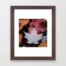 Sprinkle Leaf Framed Art Print