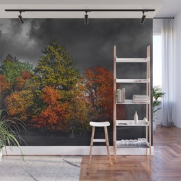 Natures Storm Wall Mural