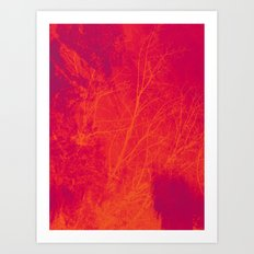 Saturated Branches Art Print
