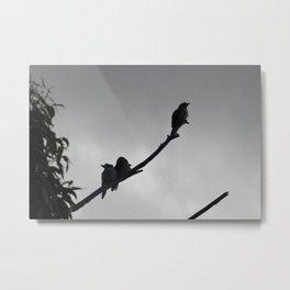 Kookaburras in a Tree Metal Print