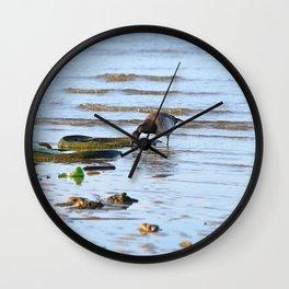 Trash Bird, #2 Wall Clock