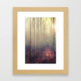 Path Through the Poplar Forest Framed Art Print