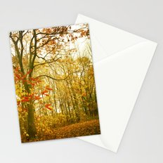 Looking For Solitude Stationery Cards