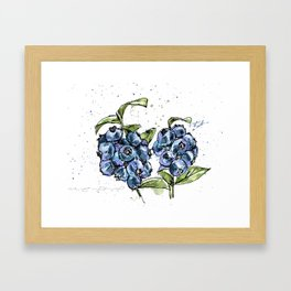 Blueberries Framed Art Print