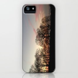 Sunset at Sunset Park iPhone Case