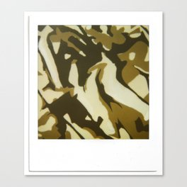 Camouflage Canvas Print