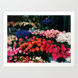 Flowers in the Grounds Art Print