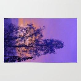 Hoarfrost Tree Sunset Rug