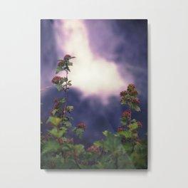 Falls and Flowers Metal Print