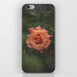 CenterPiece iPhone Skin