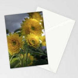 Beautiful Sunflowers Stationery Cards