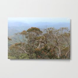 Australiana No. 3 Metal Print