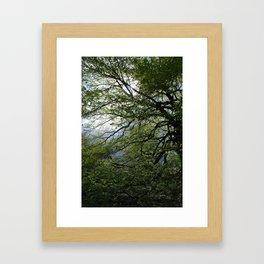 Before the Rain Framed Art Print